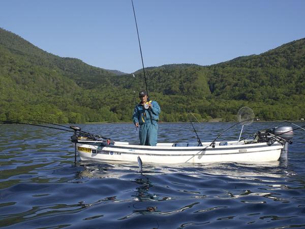 支笏湖チップ(ヒメマス)朝釣り体験