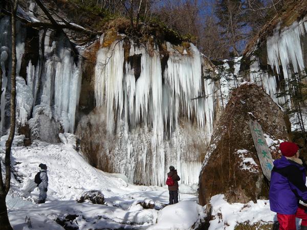 スノーシュー ウォーキング氷結した七条大滝の観賞ツアー