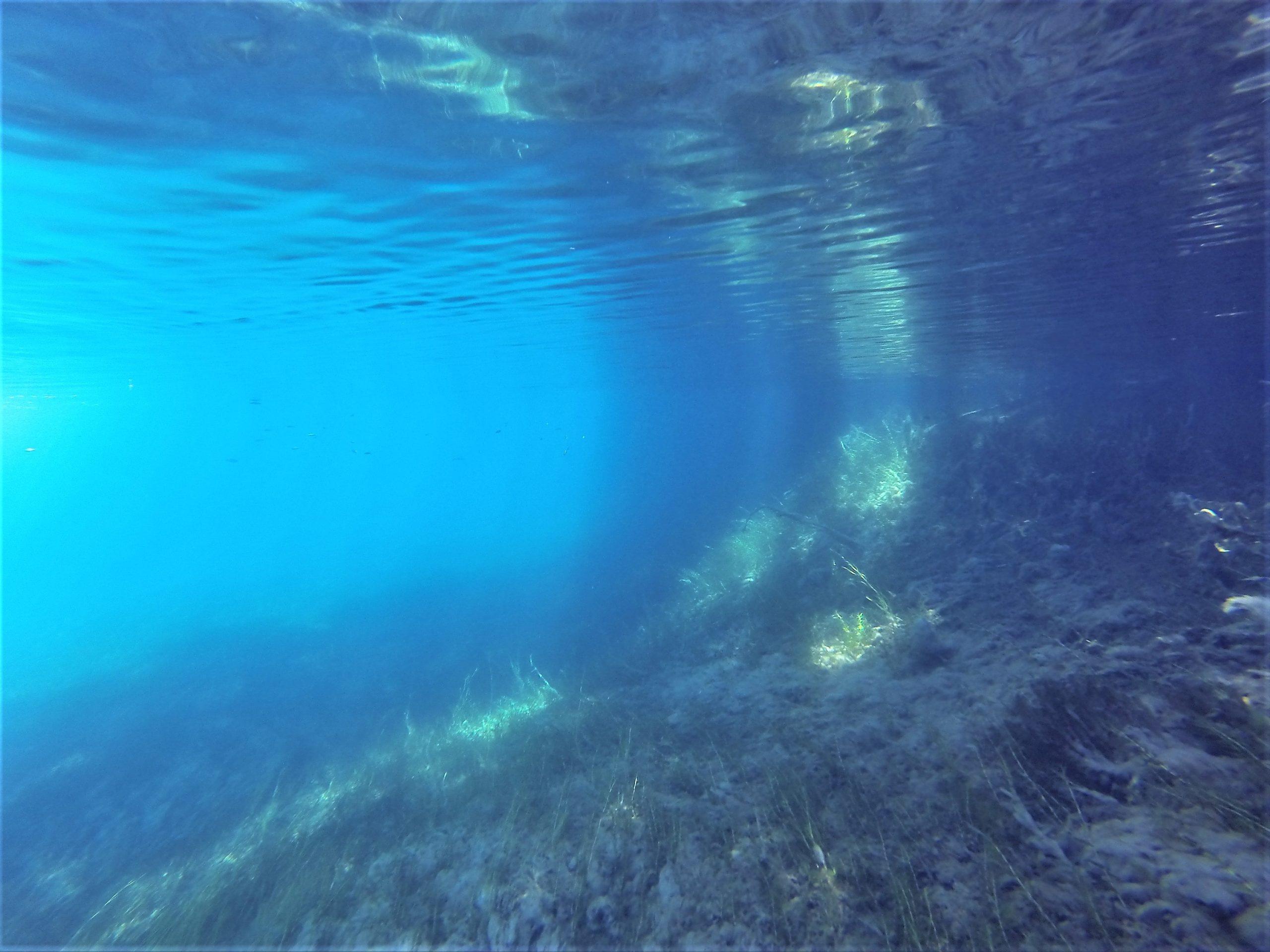 支笏湖リバーシュノーケル